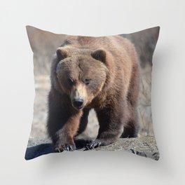 Alaskan Grizzly Bear - Spring Throw Pillow