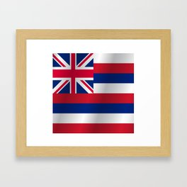 Flag of Hawaii Framed Art Print
