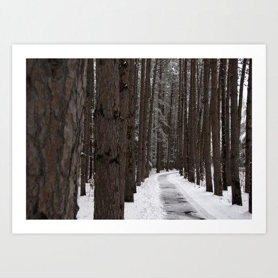 Winter Woodland Walk - A Snowy Path Art Print