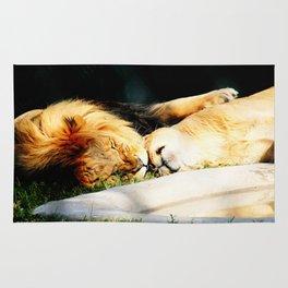 Cat Nap (Jungle Love) Rug