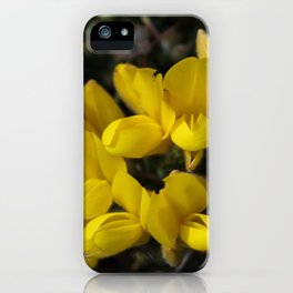 Wild Gorse iPhone Case