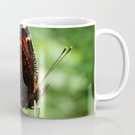 Butterfly Nymphalis Antiopa Coffee Mug
