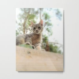 What's up kitty? Metal Print
