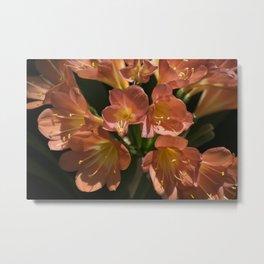 Longwood Gardens - Spring Series 260 Metal Print