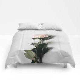 Minimalist Rose Comforters