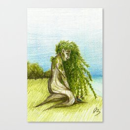 Willow 2018 Canvas Print