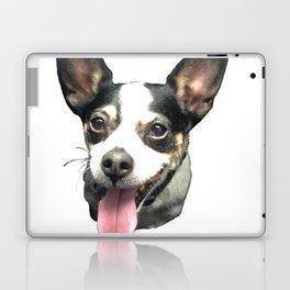 Ledge Dog Laptop & iPad Skin
