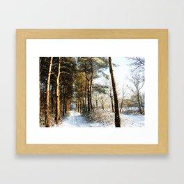 Forest Snow Scene Framed Art Print