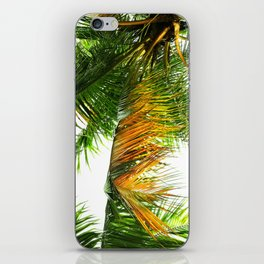 the tropical coconut is here iPhone Skin