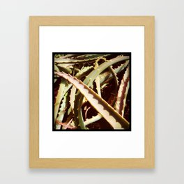 I Dare You To Touch Me Framed Art Print