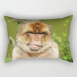 Grumpy Barbary ape Rectangular Pillow