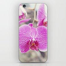 Orchid Hush  iPhone & iPod Skin