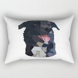 Andy Rectangular Pillow