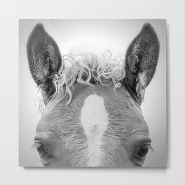 Portrait of a Horse Metal Print