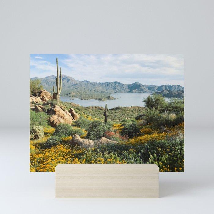 Arizona Blooms Mini Art Print