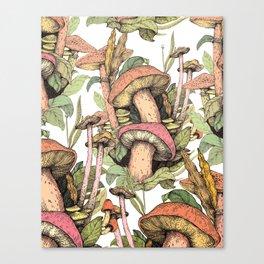 mushrooms in the wild Canvas Print
