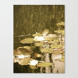 Monet's Pond  Canvas Print