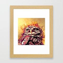 owl portrait 5 wslsh Framed Art Print
