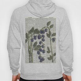 Blackberry Hoody