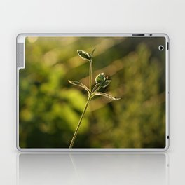 Wild garden flower Laptop & iPad Skin