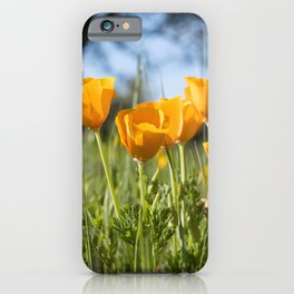 A Vibrant Gathering  iPhone Case
