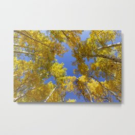 Golden Hour in Aspen Colorado / Maroon Bells Metal Print