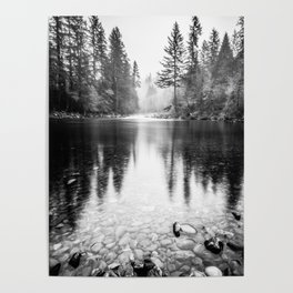 Forest Reflection Lake - Black and White  - Nature Photography Poster