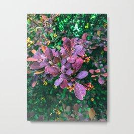 Garden Foliage Metal Print
