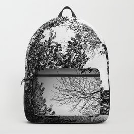Graphic faces Backpack