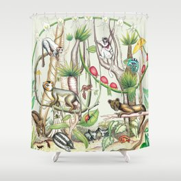 Endemic Species of Madagascar Shower Curtain