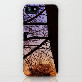 Bird watching the sunset iPhone Case