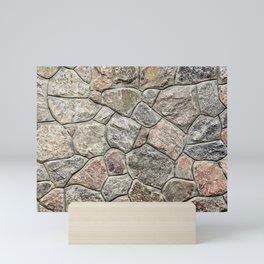 Stone texture Mini Art Print