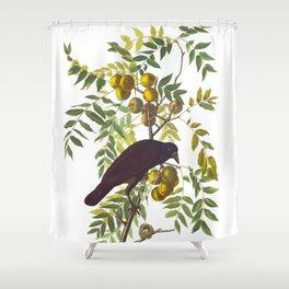 American Crow Vintage Bird Illustration Shower Curtain