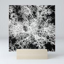 winter tree, looking down Mini Art Print