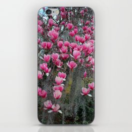 Beauty In Pink And Gray iPhone Skin