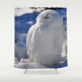 Snowy in the Snow by Teresa Thompson Shower Curtain