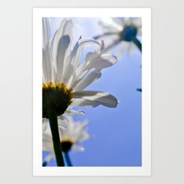 J. VanDam Photography Art Print