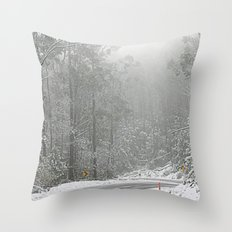 Down the Summit Throw Pillow