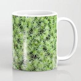 The Fairy's Futon Coffee Mug