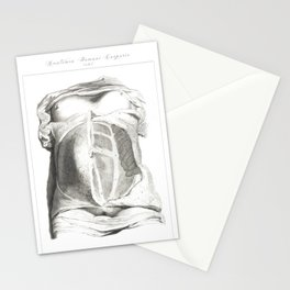 Human Anatomy Art Print MUSCLE ABDOMINALS OBLIQUE Vintage Anatomy, doctor medical art, Antique Book Stationery Cards