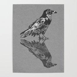 Raven Grey Poster