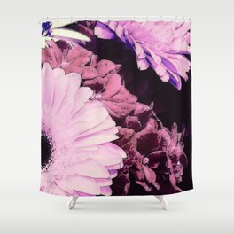 Gerberas 3 Shower Curtain
