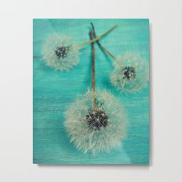Three Wishes Metal Print