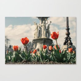 Tulips in front of a fountain. Canvas Print