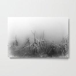 Echoes Of Reeds 4 Metal Print