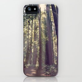 Redwoods Hike iPhone Case
