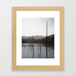 Carousel 28 Framed Art Print
