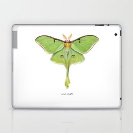Luna Moth (Actias luna) II Laptop & iPad Skin