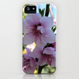 Pastel Shades of Peach Tree Blossom iPhone Case