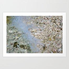 Coral shore Art Print